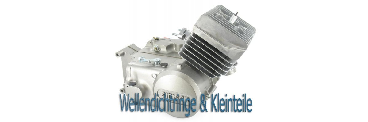 Motor-Reg